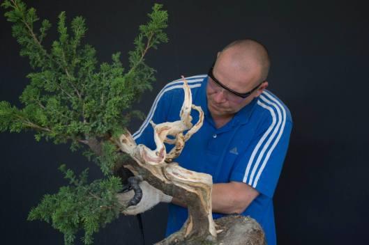 Carlos van der Vaart